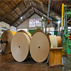 fabrica papel kraft bobina